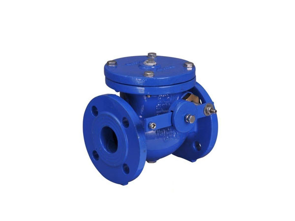Class 125 Cast Iron Swing Check Valve With Weight