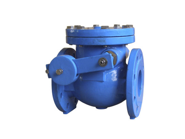 BS 5153 PN16 Cast Iron Swing Check Valve With Weight